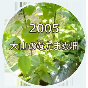 2005 大山のなたまめ畑
