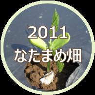 2011 大山のなたまめ畑
